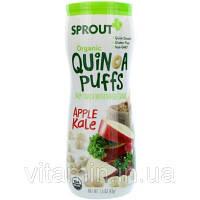Sprout Organic, Шарики с киноа, яблоко и капуста, 1,5 унции (43 г)