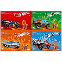Альбомы Hot Wheels HW19-241