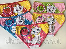 Трусы детские, хлопковое нижнее белье для девочек «Кошечка» до 5 лет (6012S)