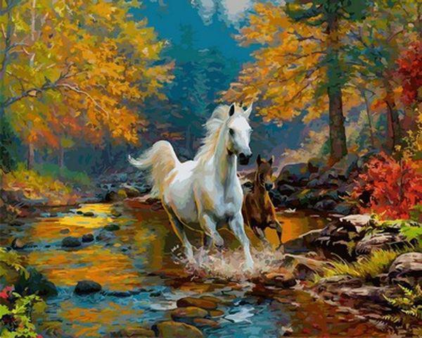 Картина по номерам 40×50 см. Babylon Лошадь и жеребенок скачут по ручью (VP 925)
