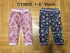 Велюровые утепленные штаны для девочек оптом, F&D, 1-5 лет,  № CY9605