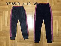 Велюровые утепленные штаны для девочек оптом, F&D, 4-12 лет,  № YF-8519