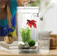 Самоочищающийся аквариум для рыбок - My Fun Fish