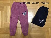 Велюровые утепленные штаны для девочек оптом, F&D, 4-12 лет,  № YF-8518, фото 1