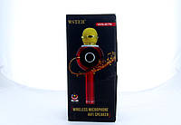 Беспроводнй микрофон DM Karaoke WS 878