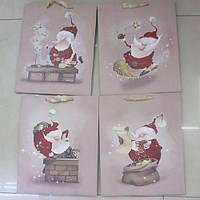 Пакет подарочный бумажный Funny Santa, 23*18*10см R27280
