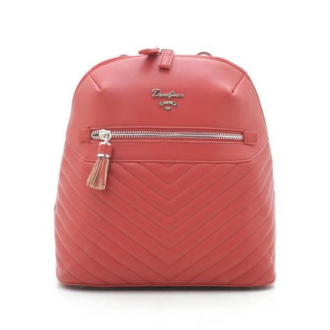 Рюкзак David Jones CM5423T red, фото 2