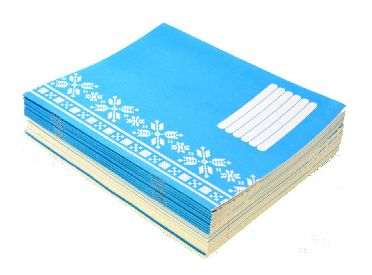 Тетрадь школьная POLISVIT, 18 листов в клетку (18#)