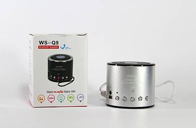 Моб.Колонка SPS WS Q9 BT (100)