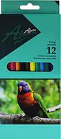 Economix. Карандаши цветные Africa, 12 штук (4044572115300)