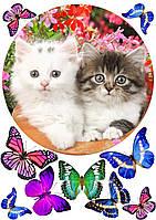 """Картинка вафельная А4"""" Котята """"(d19см), фото 1"""