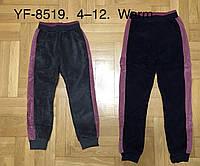 Спортивные велюровые брюки утепленные для девочек F&D оптом, 4-12 лет. Артикул: YF8519, фото 1