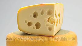 Сыр Маасдам (10-12 литров) только закваска