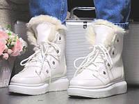 Женские Зимние Белые Сапоги Ботинки на меху р.37,38,39, фото 1