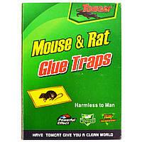 Клеевая ловушка от крыс и мышей зеленая, размер 24*17