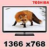 Телевізор Toshiba 32 E2533D (k.8030)