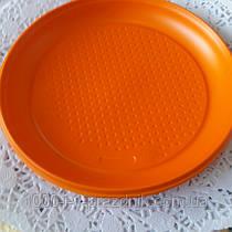 Пластиковая цветная тарелка 205 мм 10 штук