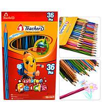 """Карандаши разноцветные """"TeacherD"""" в упаковке 36 цветов, карандаши для рисования, олівець, рисование"""