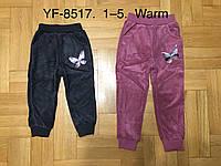 Утепленные велюровые брюки для девочек оптом, F&D, 1-5 рр.