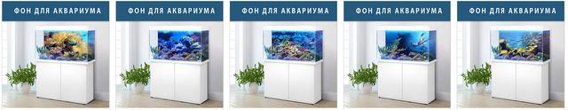 фон морского дна для аквариума