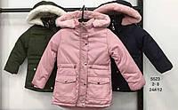 Куртки для девочек на меху оптом Nature, размеры 2-8 лет. арт. RSG-5523