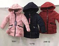 Куртки для девочек на меху оптом Nature, размеры 1-4 лет. арт. RYG-5351