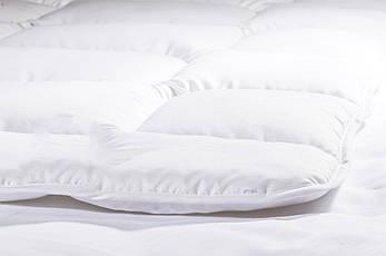 Одеяло Двуспальное 175х210 см, Всесезонное, фото 2
