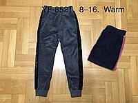 Утепленные велюровые брюки для девочек оптом, F&D, 8-16 рр.