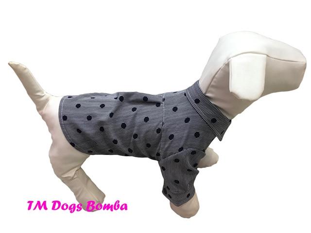 Рубашка для собак серая c точками