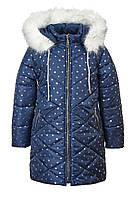 Зимняя куртка ANSK 122 синяя в горошек 5421000Z, фото 1