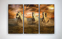 Фото картина модульная на холсте фотокартина животные Лошади холст кони
