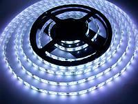 Светодиодная лента SMD 5630 60 LED/m IP65 White, фото 1