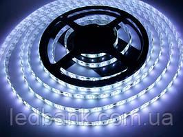 Светодиодная лента SMD 5630 60 LED/m IP65 White