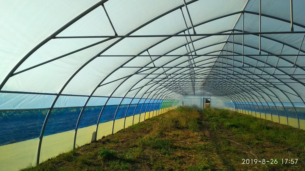 фермерська господарська теплиця зсередини