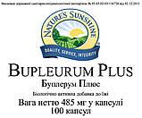 Буплерум Плюс (Bupleurum Plus) НСП. Буплерум Плюс NSP. НАТУРАЛЬНА БІОДОБАВКА, фото 5