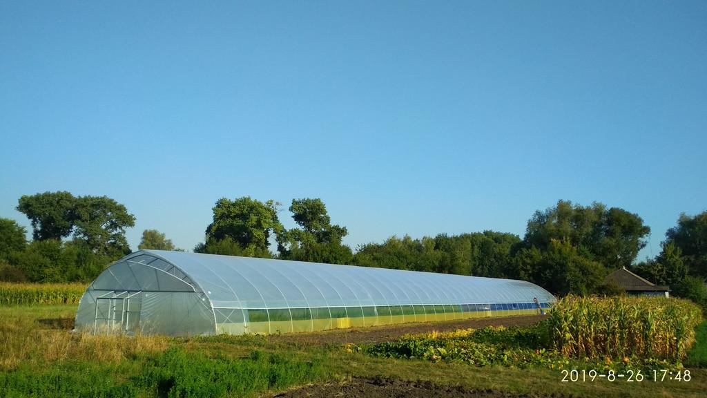 теплиці дял фермерських господарств для бізнесу
