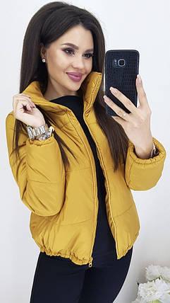 Женская демисезонная дутая куртка в расцветках, фото 2