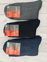 Носки мужские махровые  Milano