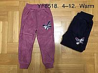 Брюки для девочек велюровые утепленные оптом, F&D, 4-12 лет, арт. YF-8518, фото 1
