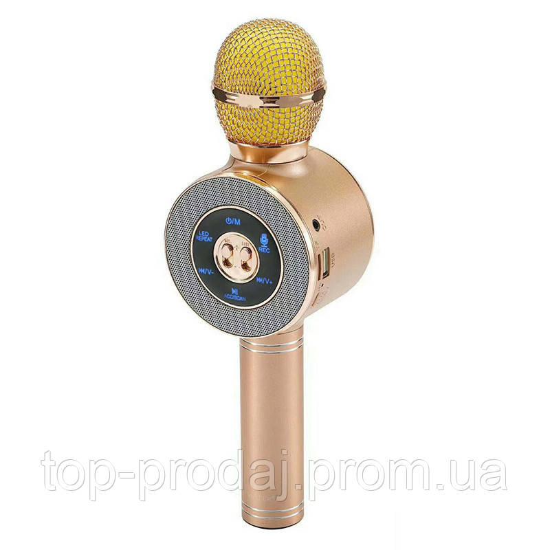 Микрофон DM Karaoke WS668, Караоке микрофон, Беспроводной микрофон, Блютуз микрофон, Вокальный микрофон