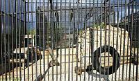 Вольеры и ограждения для животных