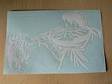 Наклейка vc Охотник и кабан 270х165мм большая белая Мисливець охота виниловая контурная на авто, фото 3