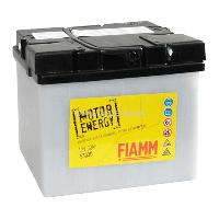 Мотоаккумулятор FIAMM 30Ah 300А F53030