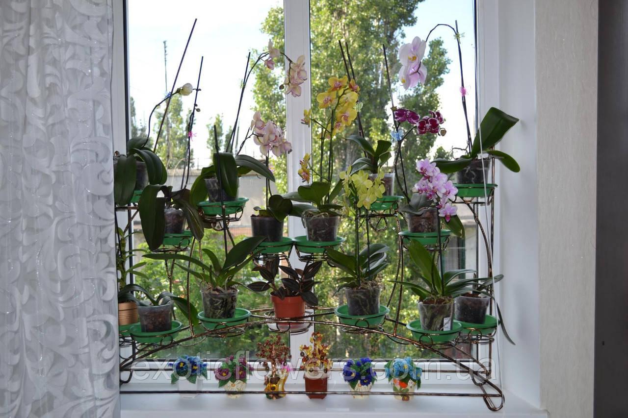 """Підставка для квітів на 15 чаш """"Антуріум-2"""""""