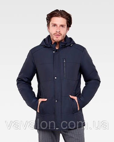 Куртка демисезонная Vavalon KD-906 navy, фото 2