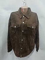 Новые поступления - женские зимние и демисезонные куртки, велюровые штаны оптом