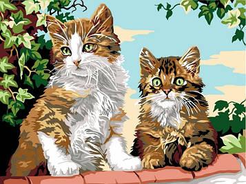 Картина за номерами 30×40 див. Babylon Кошенята на паркані (VK 114)