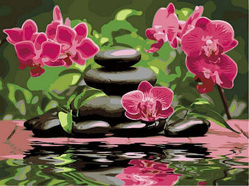 Картина за номерами 30×40 див. Babylon Лілові орхідеї (VK 014)