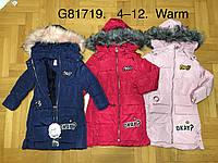 Куртки утепленные для девочек оптом, Grace, 4-12 лет, № G81719, фото 1