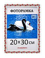Фоторамка пластиковая 20х30, рамка для фото 2216-102